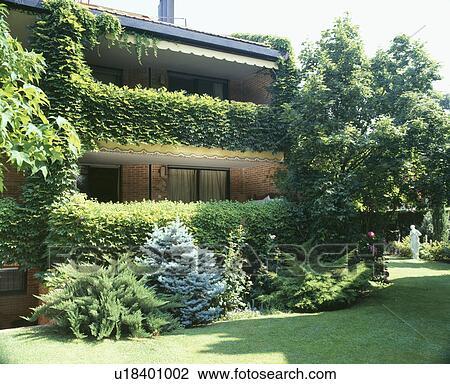 Archivio fotografico basso mattone costruito casa for Edera artificiale per balconi