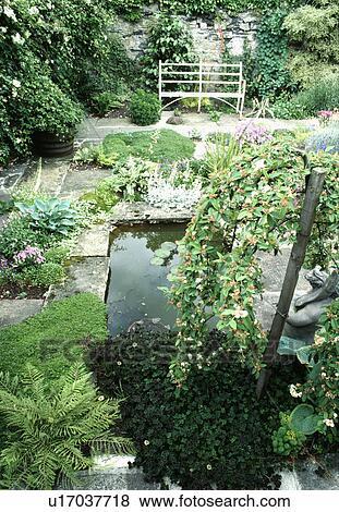 Immagini piccolo rettangolare stagno in giardino for Stagno in giardino