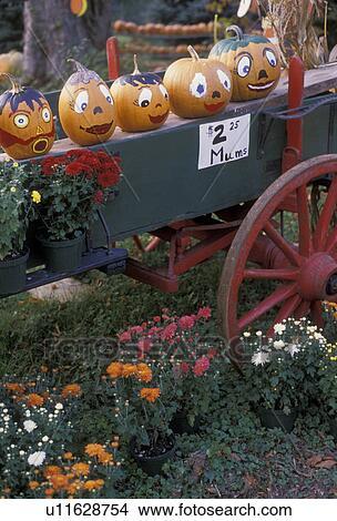 Archivio Fotografico Halloween Zucche Carro