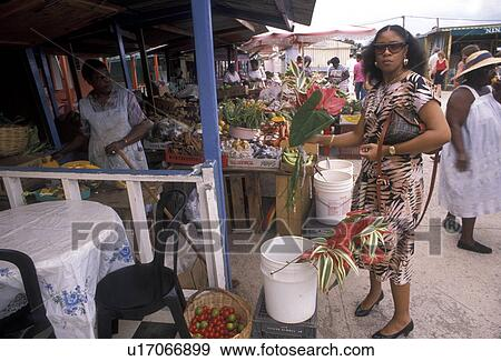 St.Maarten/St.Martin - Local Reports (Caribbean Hurricane ... |Saint Martin Island People