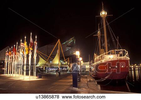 Escort Flor - 15-6737-3982 - Argentina Puerto Madero