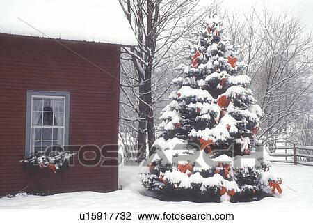 Stock foto weihnachtsbaum dekorationen feiertag haus for Haus dekorationen