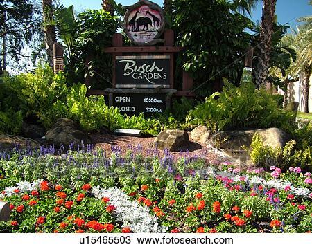 stock photo tampa fl florida tampa bay busch gardens tampa bay - Garden By The Bay Entrance