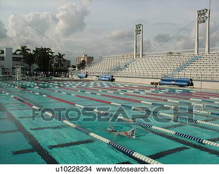 Stock Photo Of Fort Lauderdale Fl Florida International Swimming Hall Of Fame Olympic Pool