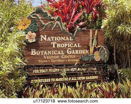 ... National Tropical Botanical Garden. Picture   Poipu, Kauai, HI, Hawaii,  South Shore, Allerton Garden,