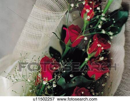 Image fleurs int rieur fleur d corations d coration - Affiches decoration interieure ...
