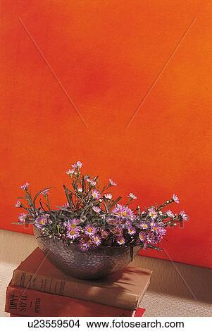 Banque de photo fleurs int rieur fleur d corations - Affiches decoration interieure ...