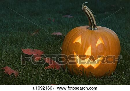 Picture of Still life of jack o lantern u10921667 - Search Stock ...