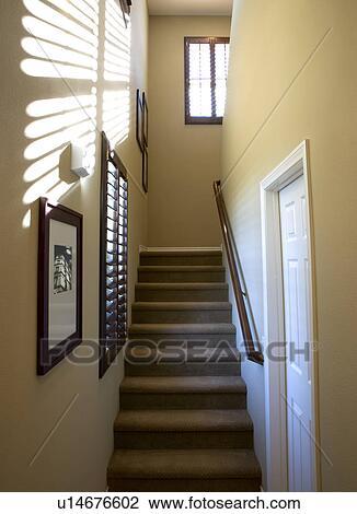 stock foto teppich belegtes treppenhaus u14676602. Black Bedroom Furniture Sets. Home Design Ideas