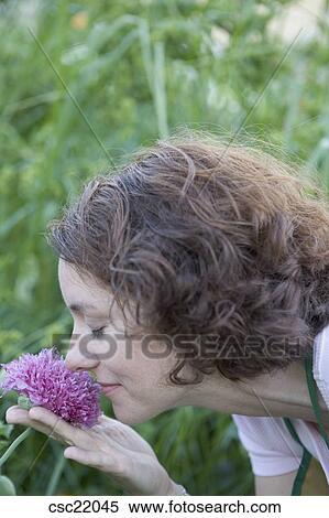 odour of chrysanthemums analysis pdf