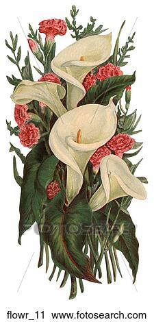 Pink easter lily clip art