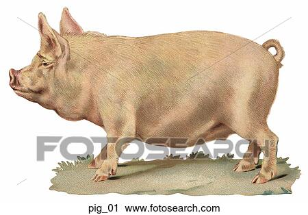 Clipart of Victorian Die Cut Illustration of a Pig pig_01 ...