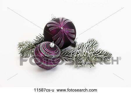 Stock bilder weihnachtsdeko lila weihnachtsbaubles und tanne zweig 11587cs u suche - Weihnachtsdeko lila ...