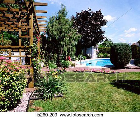 banque de photographies jardin herbe pelouse pergola usines is260 209 recherchez des. Black Bedroom Furniture Sets. Home Design Ideas