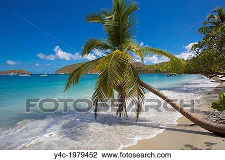 Maho Bay Beach On The Caribbean Island