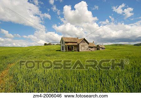 usa washington state palouse country near pullman abandoned farm house in wheat field cumulus clouds stock photograph zm4 2006046 fotosearch fotosearch