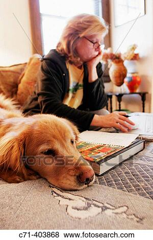 Pictures Of Woman Working On Laptop With Golden Retriever Dog On