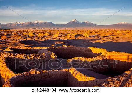 Dating desert