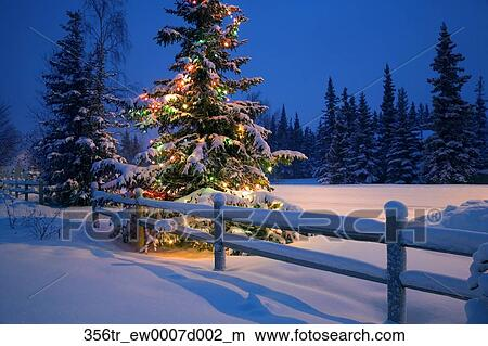Stock Photo Of Decorated Christmas Tree Along Snow Covered Fence