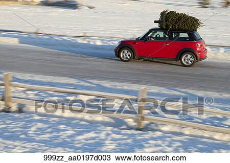 Mini Cooper Sports Car With Christmas Tree On Top Along