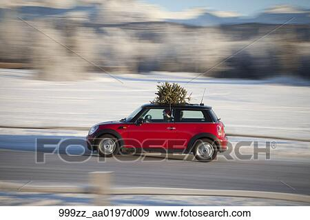 Christmas Sports Car.Mini Cooper Sports Car With Christmas Tree On Top Along Rural Road With A Split Rail Fence Southcentral Alaska Winter Stock Photo