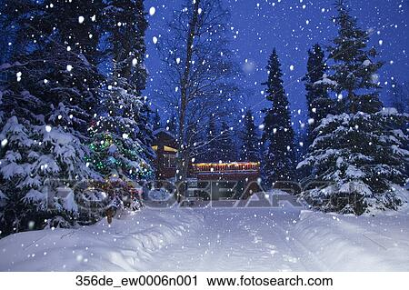 snow falling on a lit christmas tree beside a snow covered driveway with a home in the background in a forested residential area of anchorage alaska