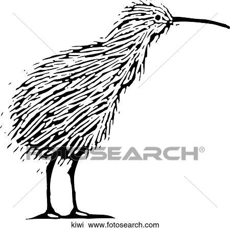 Free Image on Pixabay - Kiwi, Silhouette, Birds   Kiwi bird, Bird  silhouette, New zealand art