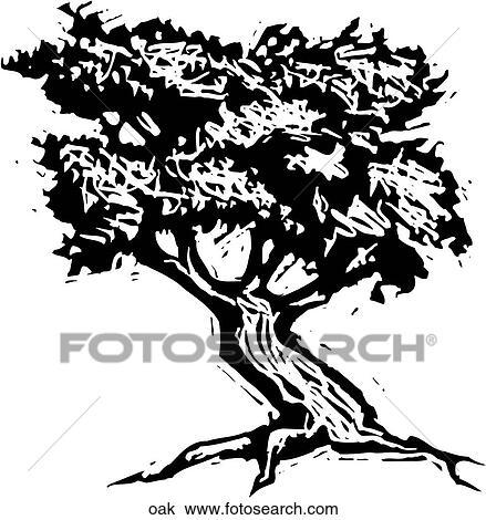 Clipart Of Oak Oak