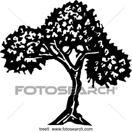 Clipart Of Tree 5 Tree5