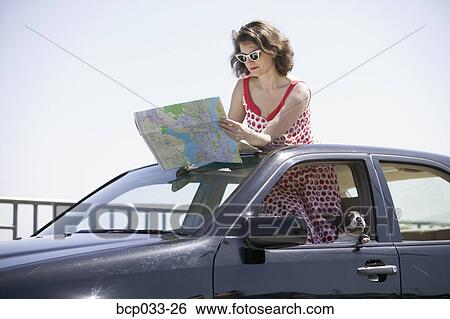 Woman In Car With Dog Reading Map Stock Photograph Bcp033 26