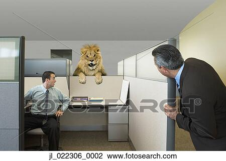 businessmen looking at lion in office cubicle i8 cubicle