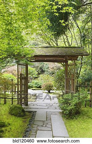 Gazebo, dans, jardin japonais, portland, orégon, etats unis Banque d\'Image
