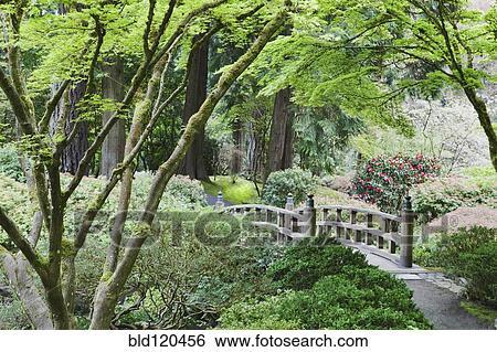 Stock Images of Wooden bridge in Japanese Garden, Portland, Oregon ...