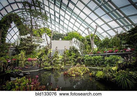 Stock Bilder Aufwendig Kleingarten In Gewachshaus Bld133076
