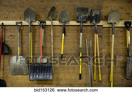 Ordinaire Shovels And Tools Hanging From Hooks In Shed