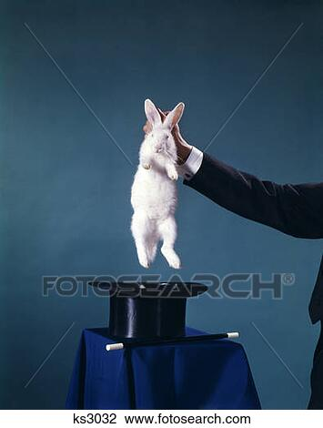 Hand Of Magician Pulling White Rabbit Out Of Black Top Hat