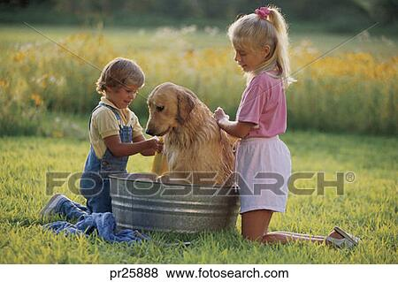 Pictures Of Kids Washing Dog Outside Pr25888 Search