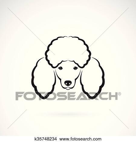 Clipart vettore immagine di un cane barboncino - Colorazione immagine di un cane ...