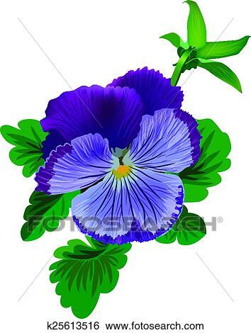 すみれ パンジー 花 で 葉 そして つぼみ クリップアート