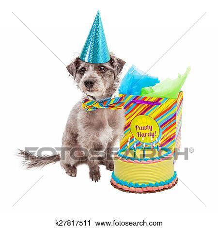 Stock Fotografie Gelukkige Verjaardag Partij Hond K27817511