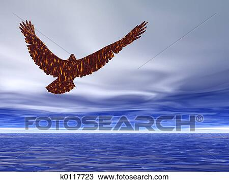 American Bald Eagle Soaring At Sunset Haliaeetus Leucocephalus Photographic Print By Roy Toft Art