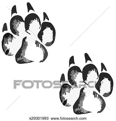Footprints Of A Big Dog Or Cat Drawing