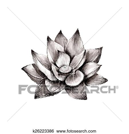 Clip art of illustration of hand drawn lotus flower k26223386 clip art illustration of hand drawn lotus flower fotosearch search clipart illustration mightylinksfo