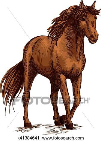 Clipart Cheval Gratuit clipart - cheval brun, arpenter, calme, dans, sauvage k41384641