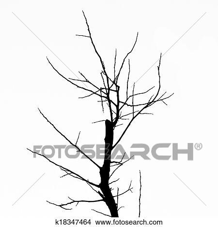 Dibujos árbol Muerto Sin Hojas K18347464 Buscar Clip Art
