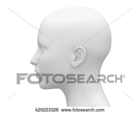 Stock Illustration Of Female Head Muscles Anatomy Side K20223326