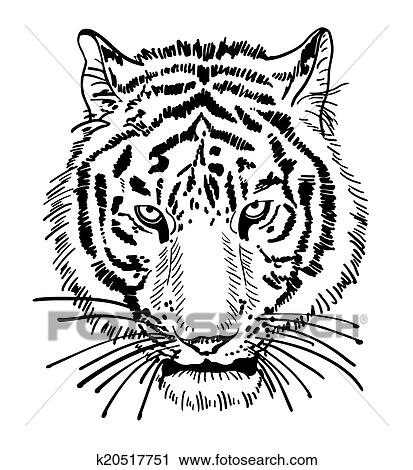 Artwork of tiger face portrait head silhouette black and white sketch digital drawing isolated on white background vector illustration