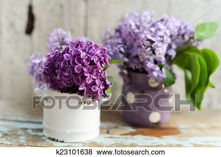 Zwei Töne Lila Blumen Mit Guten Morgen Merkzettel Stock