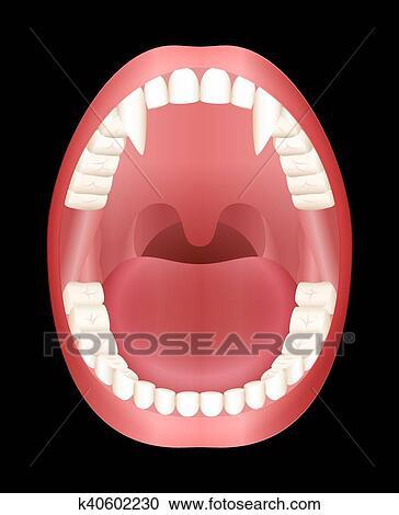 clipart dentes vampiro boca aberta k40602230 busca de