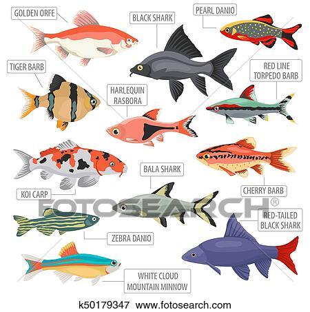 Aquarium Fische Süßwasser Liste : s wasser aquarium fische rassen symbol satz flache stil freigestellt auf white ~ Watch28wear.com Haus und Dekorationen